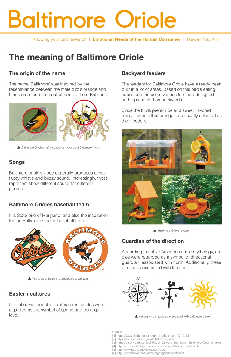 baltimore-oriole_know-your-bird-research_human-interaction-research-02