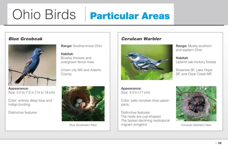 particular-areas-ohio-birds-02